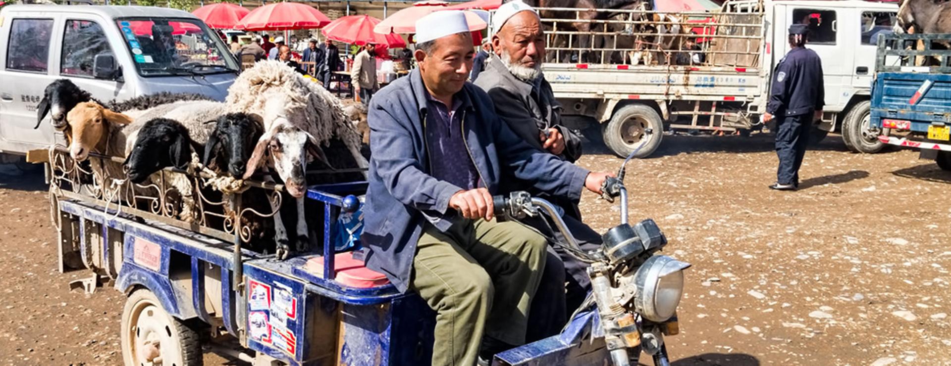Sidenvagen – Kashgar